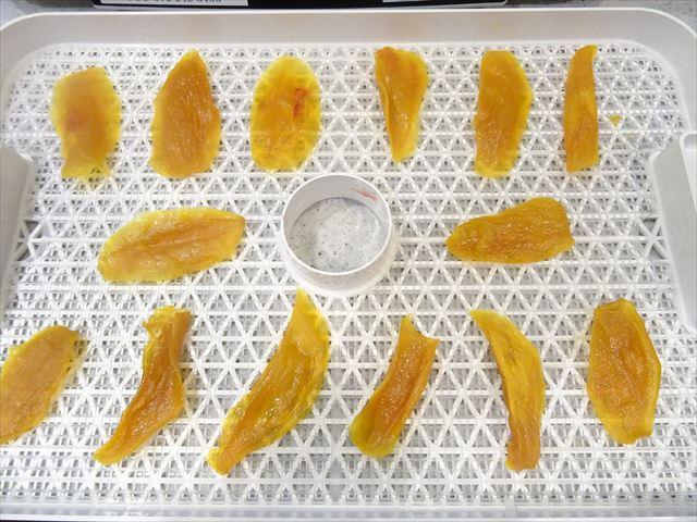 マンゴー 食品乾燥機 12時間乾燥後