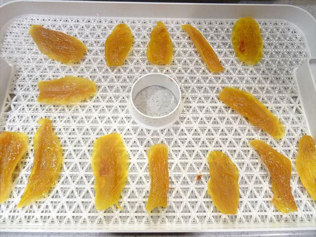 食品乾燥機ドラミニ マンゴー18時間乾燥後