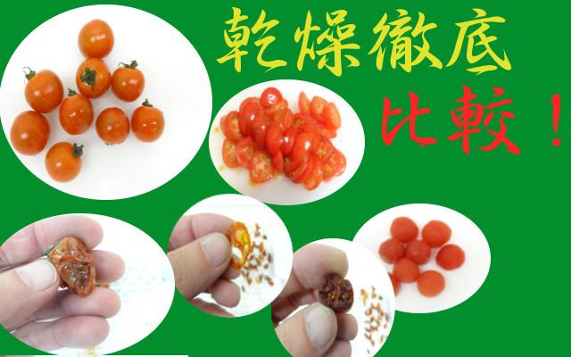 プチトマト乾燥比較