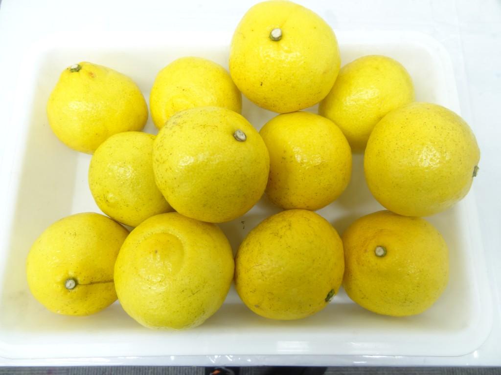レモン乾燥前