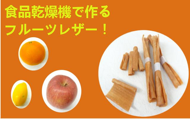 フルーツレザー 食品乾燥機