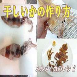 [スルメの作り方]食品乾燥機でイカを干す簡単レシピ
