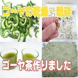 [ゴーヤ茶の作り方]干したゴーヤを小型微粉砕器でパウダーに!