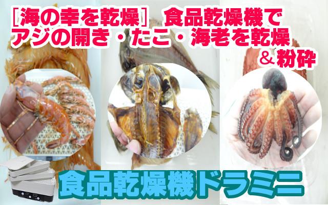 海産物を乾燥 アジの開き タコ 海老