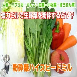 [生の野菜、果物を粉砕!]強力ミルで人参・パプリカ・りんご・白菜・小松菜・ほうれん草ペーストに!