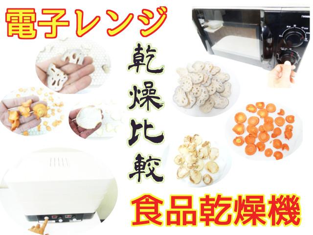 食品乾燥機と電子レンジの乾燥比較