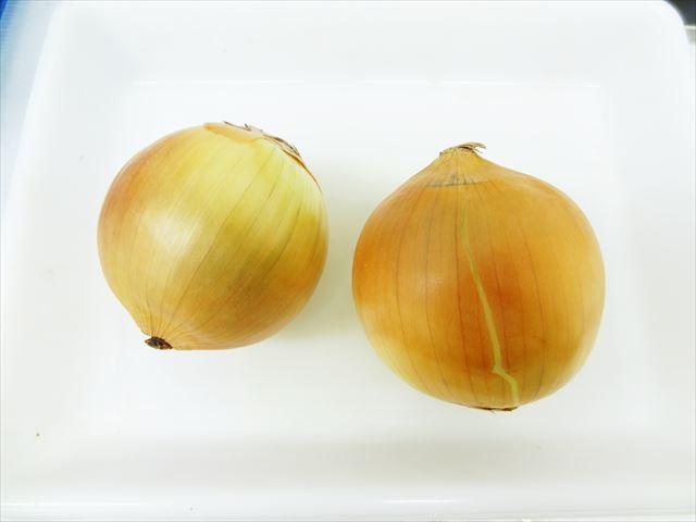 玉ねぎ 乾燥の準備
