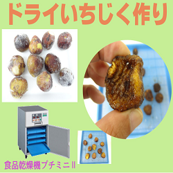 [ドライ・干しいちじくの作り方]食品乾燥機「プチミニⅡ」「ドラミニ」