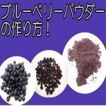 [ドライブルーベリーパウダー作り]果物乾燥機と強力小型ミル